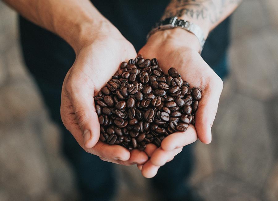 koffievoormoeders